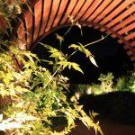 chaumont-nuit-03