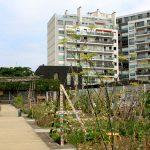 thumb-jardin