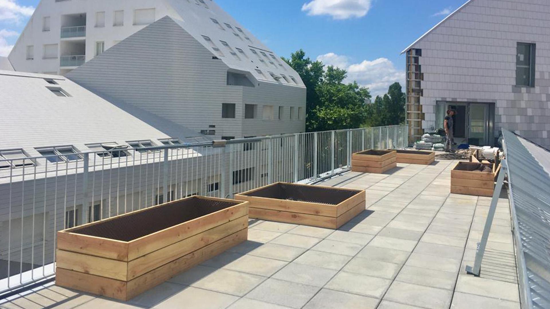 Nouveau chantier : un potager en toiture